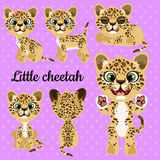 Emotions little leopard on a pink background Stock Photo