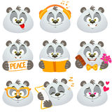 Emotions panda Stock Photos