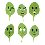 Emotions spinach. Set expressions avatar greens. lettuce leaf Go Stock Images