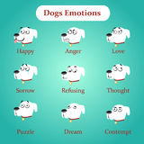 Emotions white dogs on a blue background Royalty Free Stock Photos