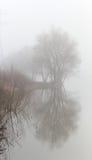 Empáñese sobre el agua en la primavera en la madrugada Imagen de archivo libre de regalías