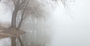 Empáñese sobre el agua en la primavera en la madrugada Imagenes de archivo