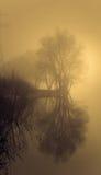 Empáñese sobre el agua en la primavera en la madrugada Foto de archivo libre de regalías