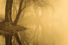 Empáñese sobre el agua en la primavera en la madrugada Imágenes de archivo libres de regalías