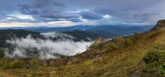 Empañe el abedul del arrastramiento en la tarde nublada del otoño de las cuestas de montaña Imagen de archivo libre de regalías