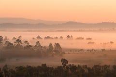 Empañe el recubrimiento de los bosques de la montaña en la mañana imagen de archivo libre de regalías
