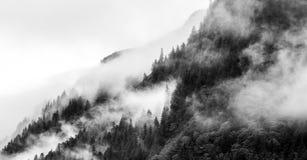 Empañe el recubrimiento de los bosques de la montaña con la nube baja en Juneau Alaska para el paisaje de la niebla imagenes de archivo