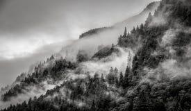 Empañe el recubrimiento de los bosques de la montaña con la nube baja en Juneau Alaska para el paisaje de la niebla Imágenes de archivo libres de regalías
