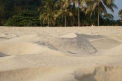 Empañe la arena, las palmeras y fondo del bokeh de la playa, las vacaciones de verano y concepto tropicales del viaje Copie el es Fotos de archivo