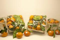 Empacotamento de alimento III Imagens de Stock