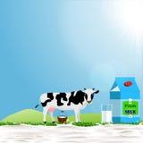 Empacotamento do produto da vaca e de leite Foto de Stock Royalty Free