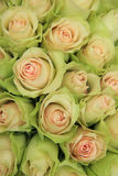 Empalideça - rosas cor-de-rosa em um arranjo do casamento Fotografia de Stock