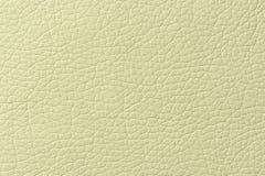Empalideça - a textura verde do fundo do couro artificial Foto de Stock Royalty Free