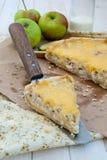 Empanada con el pollo, las manzanas y el queso Imagen de archivo libre de regalías