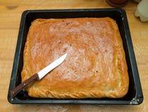 Empanada con las patatas y la col en el molde para el horno imagen de archivo