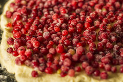 Empanada cruda de la pasa roja en una cacerola de la empanada del metal Frutas y bayas rojas Cierre para arriba Foto de archivo libre de regalías