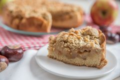 Empanada de Apple recientemente cocida al horno Imagen de archivo libre de regalías