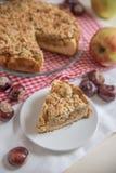 Empanada de Apple recientemente cocida al horno Foto de archivo libre de regalías
