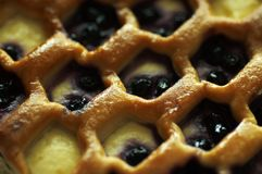 Empanada de arándano Imagen de archivo libre de regalías