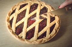 Empanada de arándano fresca Imagen de archivo libre de regalías