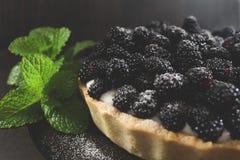 Empanada de Blackberry fotos de archivo