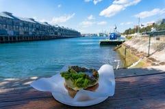 Empanada de carne tradicional australiana con el muelle de los fingeres en el backgr Imagen de archivo libre de regalías
