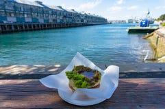 Empanada de carne tradicional australiana con la bahía de Woolloomooloo en los vagos Fotos de archivo libres de regalías