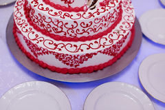 Empanada 8 de la boda Fotos de archivo libres de regalías