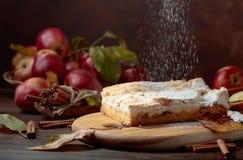 Empanada de manzana clásica deliciosa cocida fresca foto de archivo libre de regalías