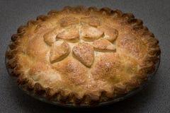 Empanada de manzana cocida al horno Foto de archivo libre de regalías