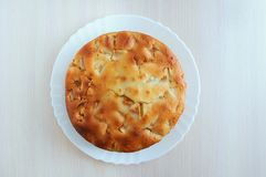 Empanada de manzana recientemente cocida en una placa blanca fotografía de archivo libre de regalías