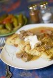 Empanada del cocido húngaro Foto de archivo libre de regalías