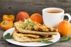 Empanada deliciosa con el atasco del albaricoque Imagen de archivo