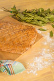 Empanada gallega, traditional Spanish food stock photo