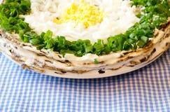 Empanada hepática adornada con las cebollas Imagenes de archivo