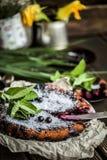 Empanada rústica hermosa con las grosellas negras Foto de archivo libre de regalías