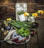 Empanada rústica hermosa con las grosellas negras Foto de archivo