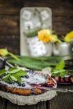 Empanada rústica hermosa con las grosellas negras Fotografía de archivo