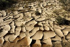 Empanada seca del fango Fotos de archivo libres de regalías