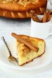 Empanada y cinamomo hechos en casa de manzana Imagenes de archivo