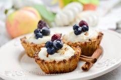 Empanadas de los pasteles de la avena con crema de la manzana Fotos de archivo