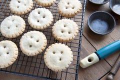 Empanadas hechas en casa Imagen de archivo libre de regalías