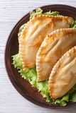 Empanadas on a plate close-up. vertical view from above Royalty Free Stock Images