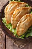 Empanadas on a plate with lettuce close-up. vertical top view Stock Image