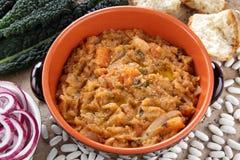 Empane el ribollita de la sopa Foto de archivo