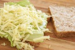 Emparedado abierto sabroso del queso en el trigo integral foto de archivo libre de regalías