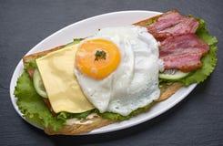 Emparedado con el huevo frito Fotografía de archivo libre de regalías