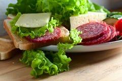 Emparedado con el salami y el queso imagen de archivo libre de regalías