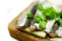 Emparedado con las cebollas de los pescados y del resorte Imagenes de archivo