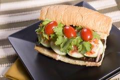 Emparedado de Banh MI del queso de soja del vegano Foto de archivo libre de regalías